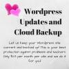Wordpress Updates and Backups